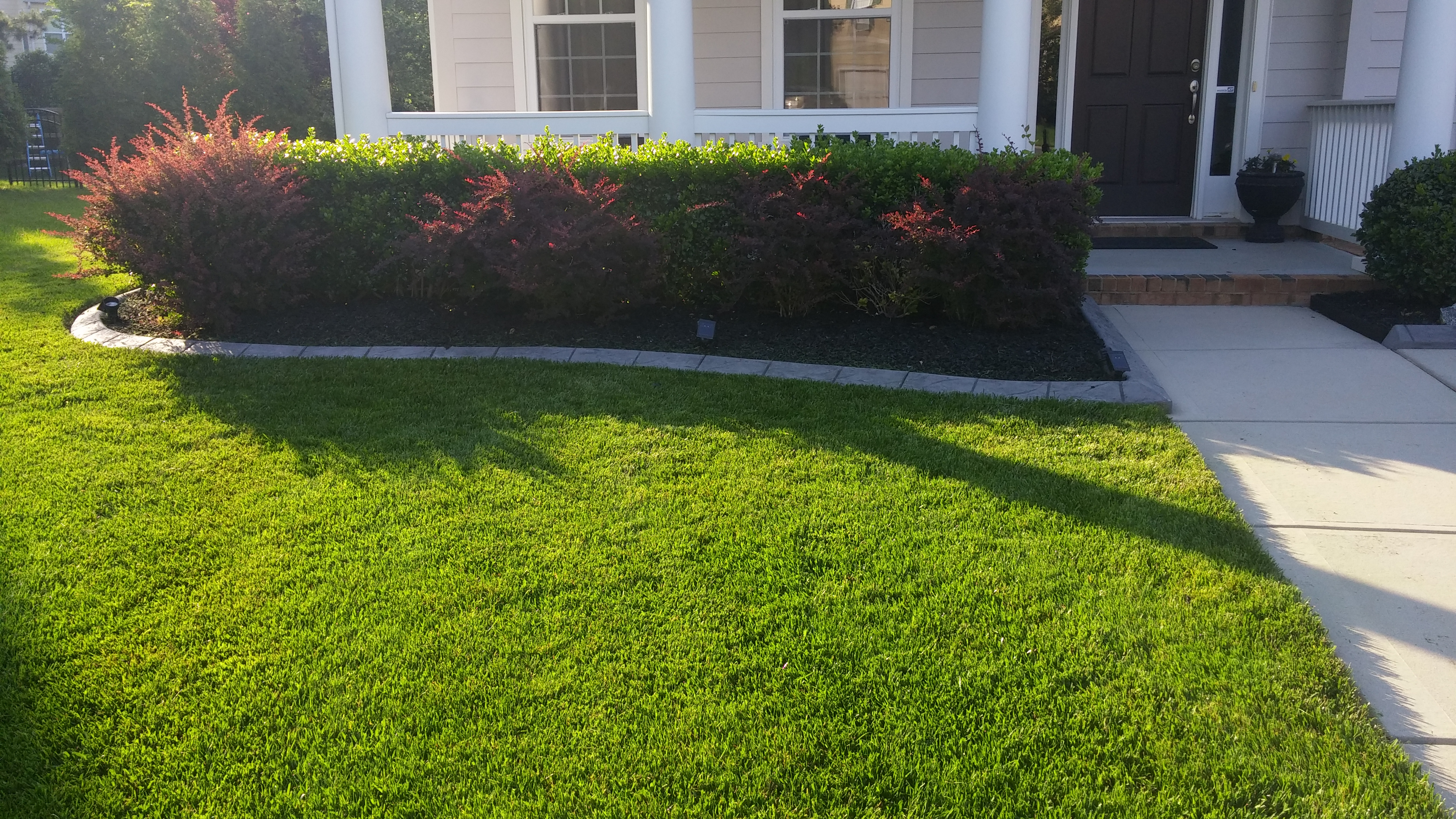 Black Rubber Mulch For Landscaping