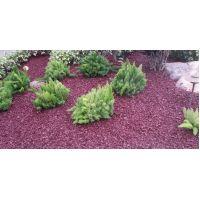 Red Rubber Mulch Landscape Customer Photo 1